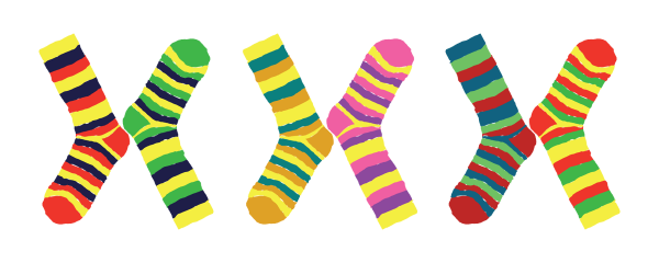 silly_sock_clipart_4.png